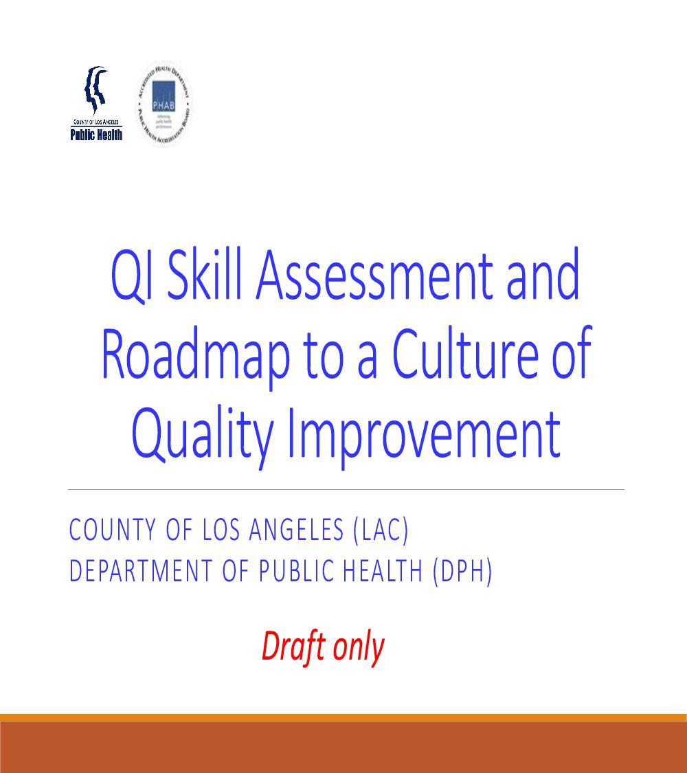 Skill Assessment Roadmap To Culture QI Draft